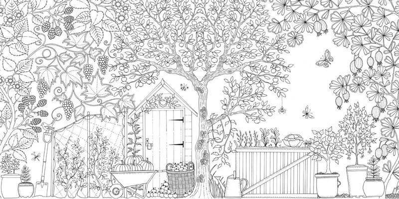 秘密花园简笔画-瞬间减压兼变艺术家疯魔全球的4款绘本 Yoho Girls No